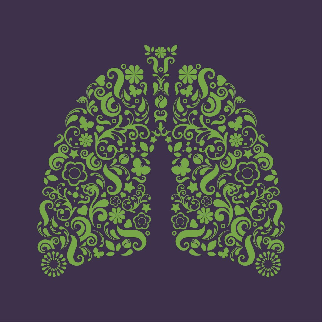 Lungs - Breathing - The Gift of Life