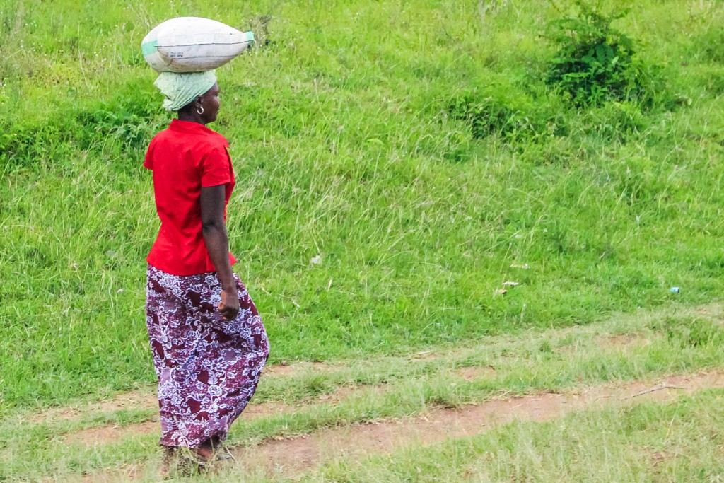 Balanced Head for Graceful Walking