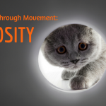 Jet Fuel for Awareness Through MovementⓇ Lessons: Curiosity