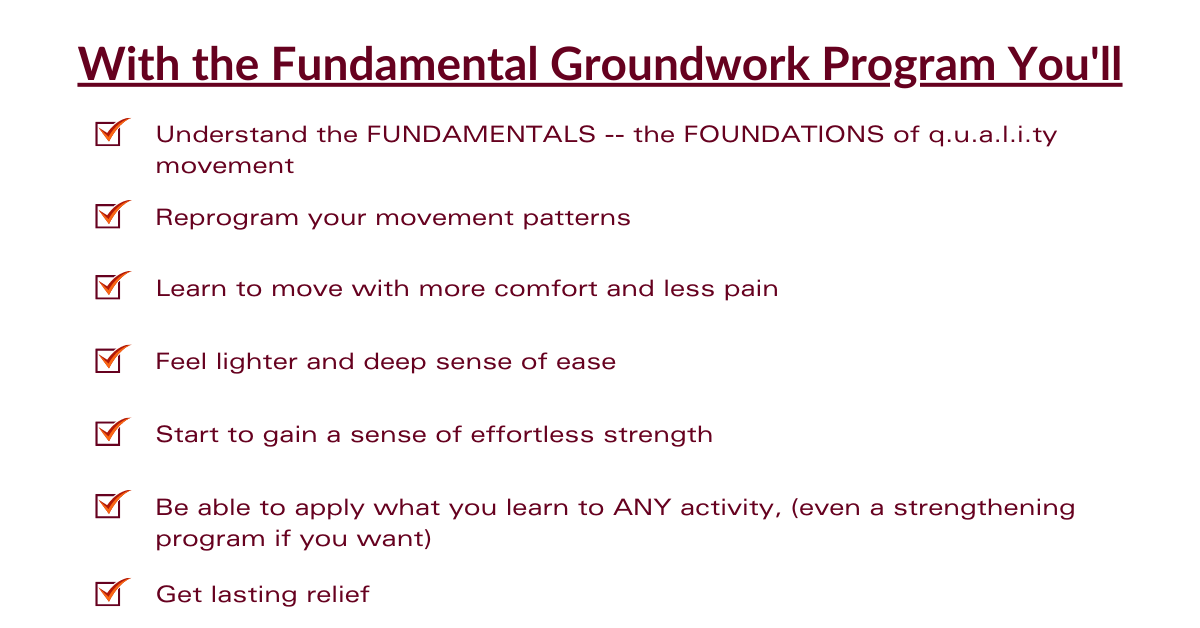 What you'll learn with the fundamental groundwork program